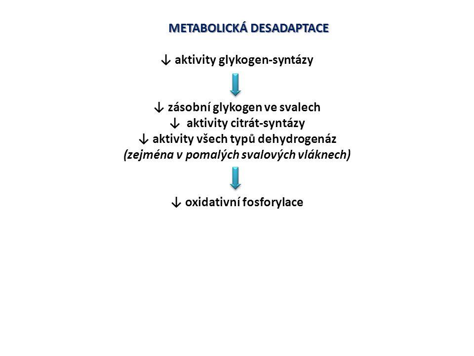 METABOLICKÁ DESADAPTACE ↓ aktivity glykogen-syntázy