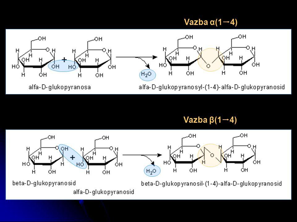 Vazba α(14) Vazba β(14)