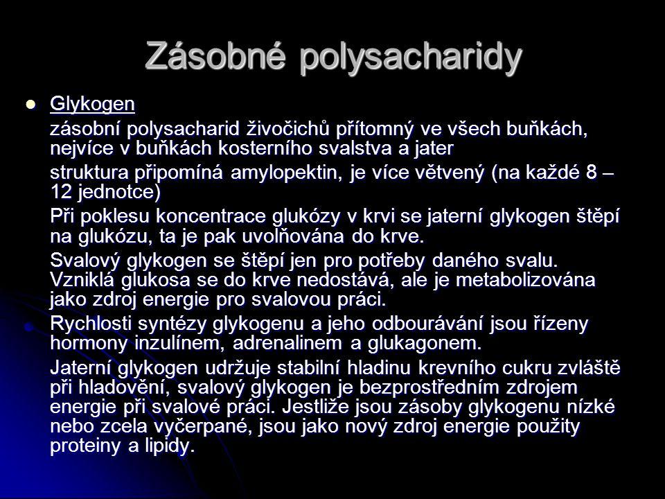 Zásobné polysacharidy