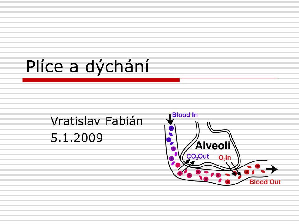 Plíce a dýchání Vratislav Fabián 5.1.2009