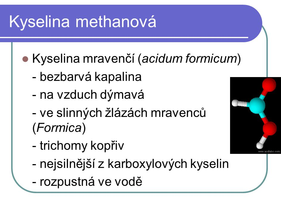 Kyselina methanová Kyselina mravenčí (acidum formicum)