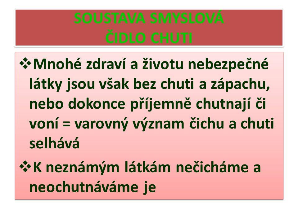 SOUSTAVA SMYSLOVÁ ČIDLO CHUTI
