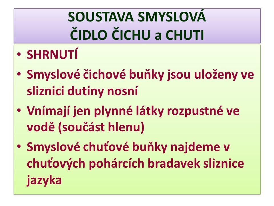 SOUSTAVA SMYSLOVÁ ČIDLO ČICHU a CHUTI
