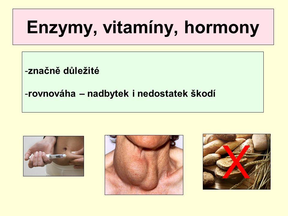 Enzymy, vitamíny, hormony
