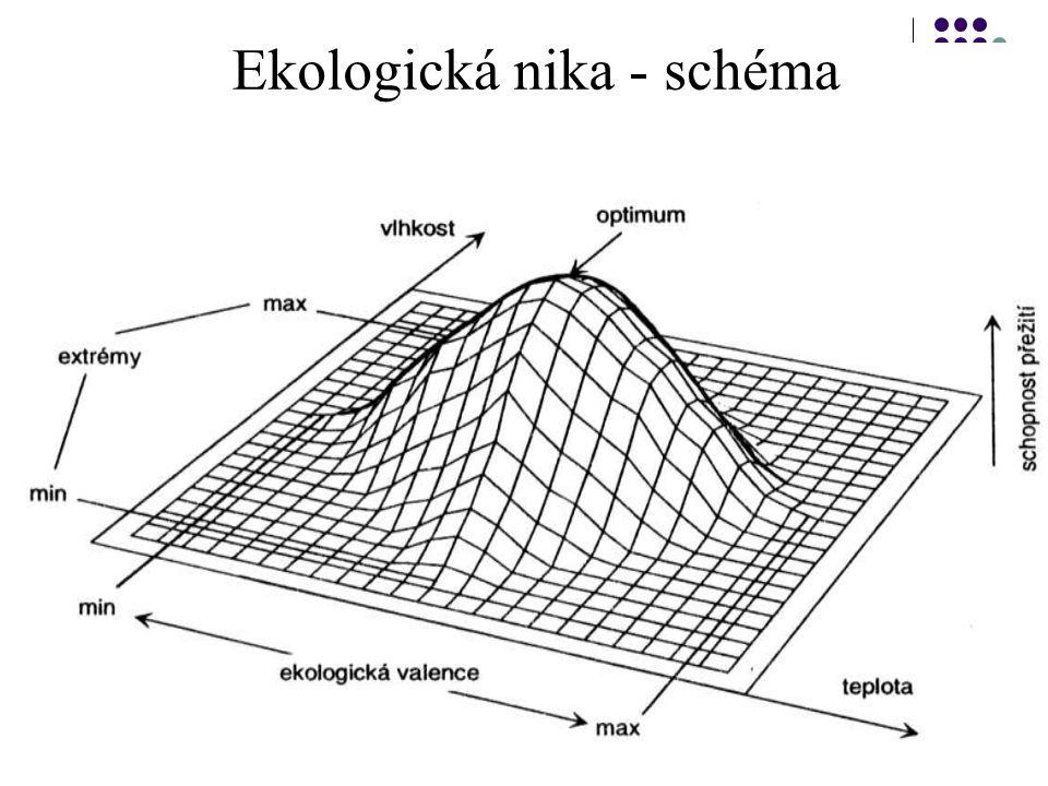 Abiotické faktory a ekologické limity