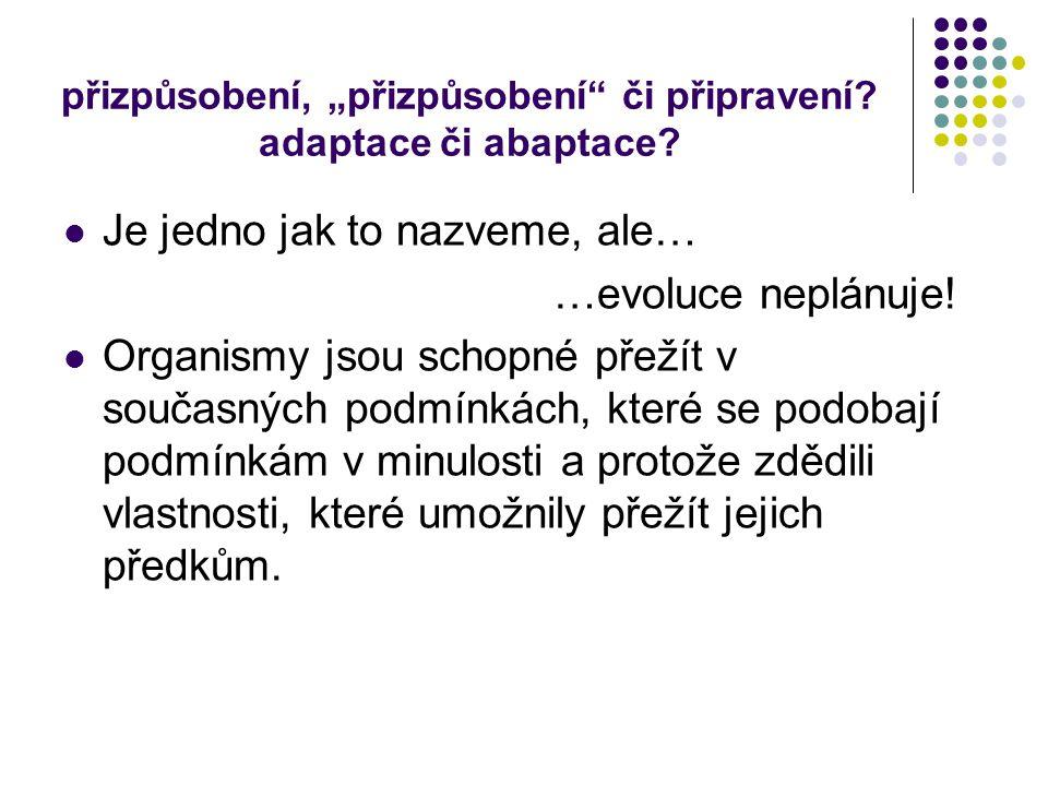 """přizpůsobení, """"přizpůsobení či připravení adaptace či abaptace"""