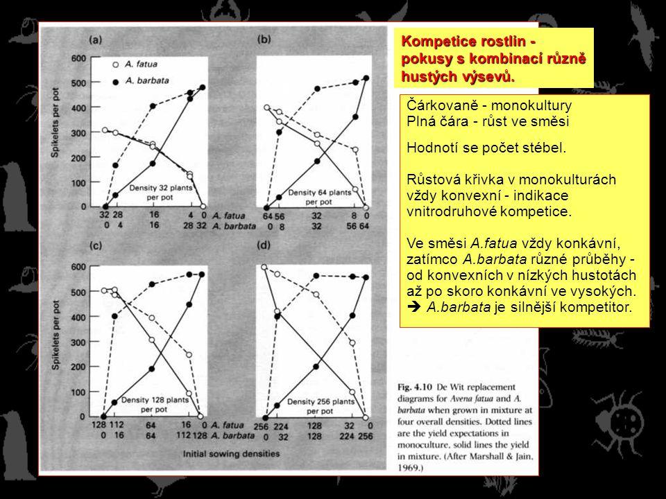 Kompetice rostlin - pokusy s kombinací různě hustých výsevů. Čárkovaně - monokultury. Plná čára - růst ve směsi.