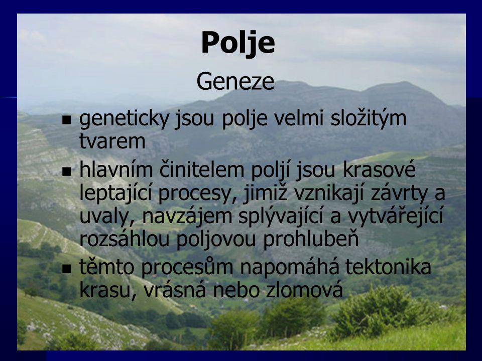 Polje Geneze geneticky jsou polje velmi složitým tvarem