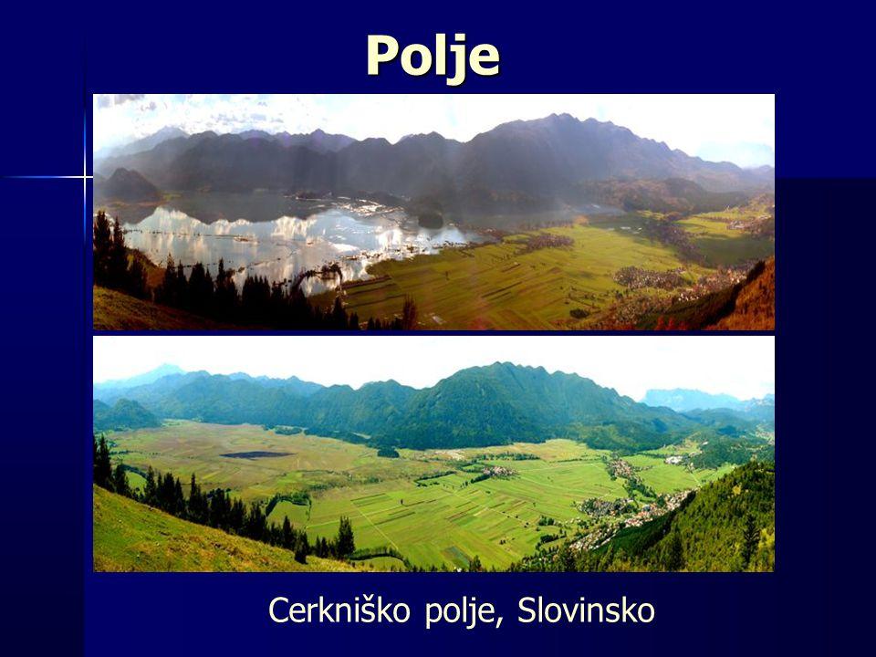 Cerkniško polje, Slovinsko