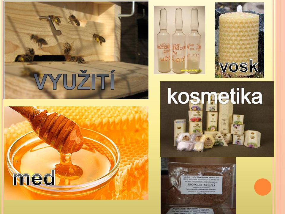 vosk VYUŽITÍ kosmetika med