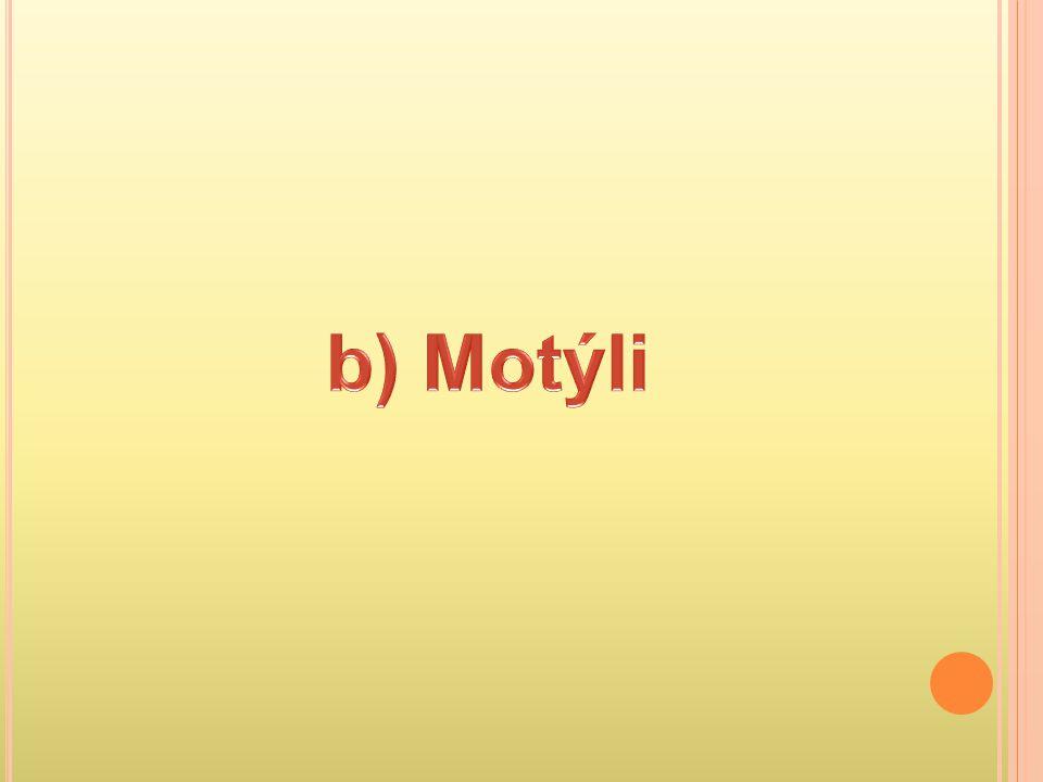 b) Motýli