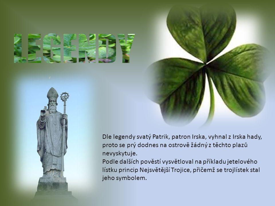 LEGENDY Dle legendy svatý Patrik, patron Irska, vyhnal z Irska hady, proto se prý dodnes na ostrově žádný z těchto plazů nevyskytuje.