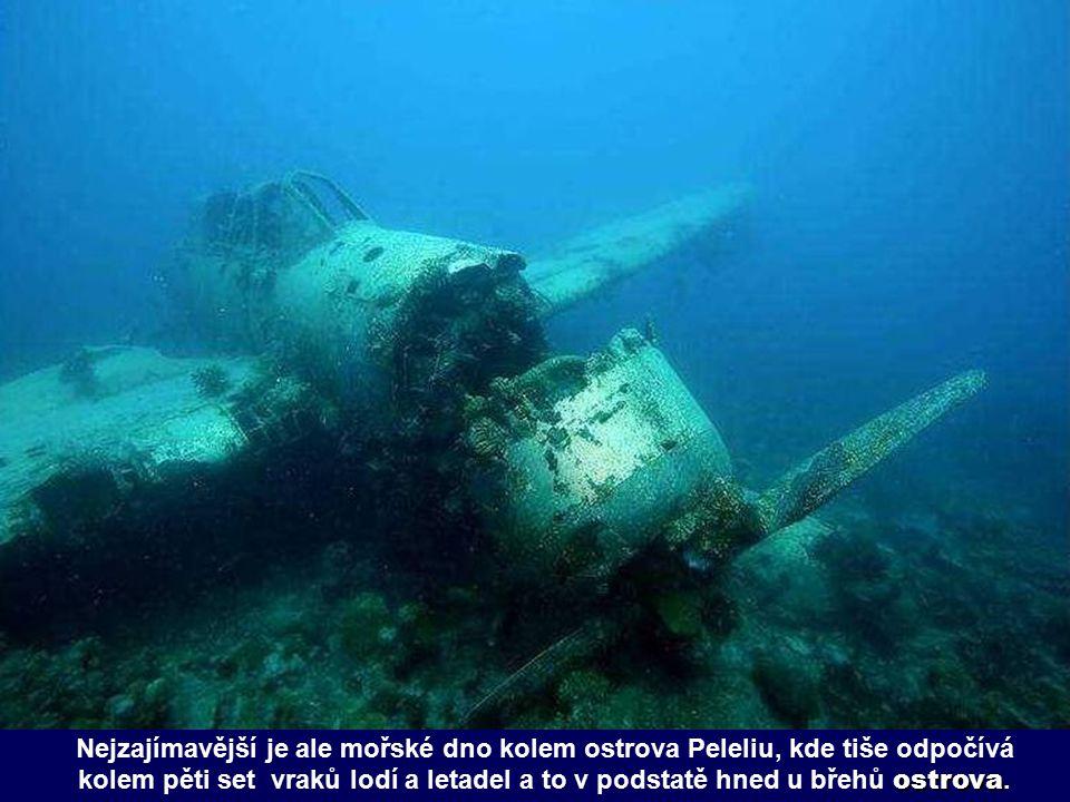 Nejzajímavější je ale mořské dno kolem ostrova Peleliu, kde tiše odpočívá kolem pěti set vraků lodí a letadel a to v podstatě hned u břehů ostrova.