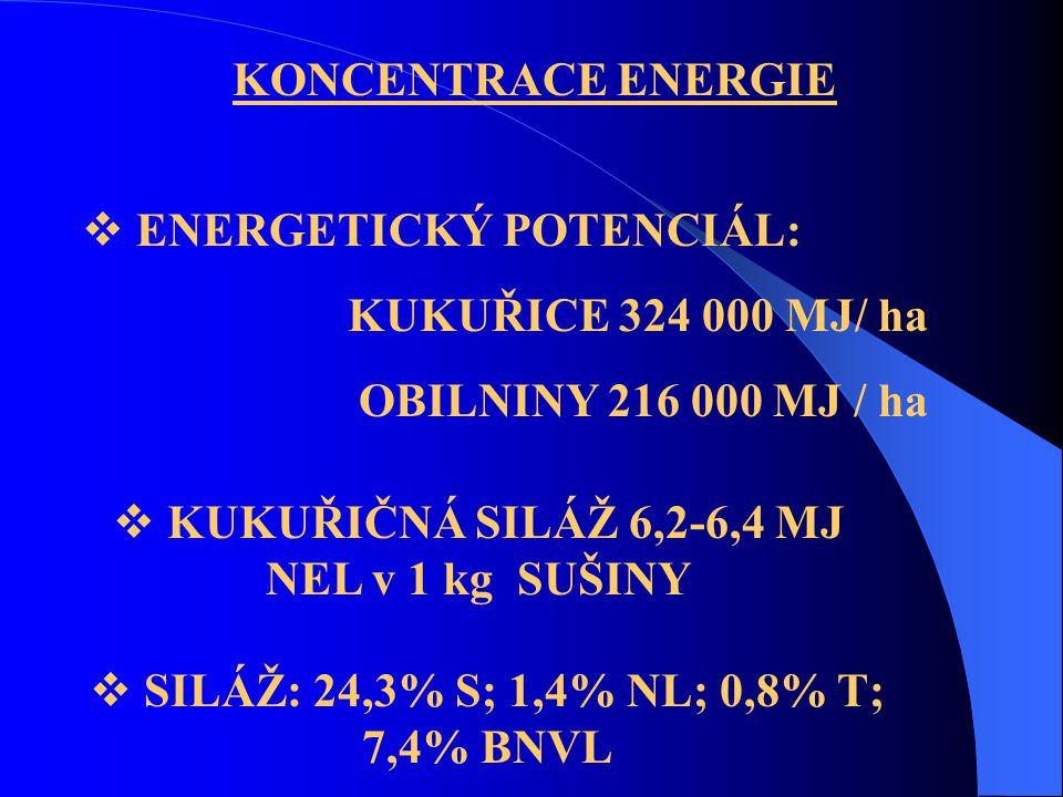 ENERGETICKÝ POTENCIÁL: KUKUŘICE 324 000 MJ/ ha