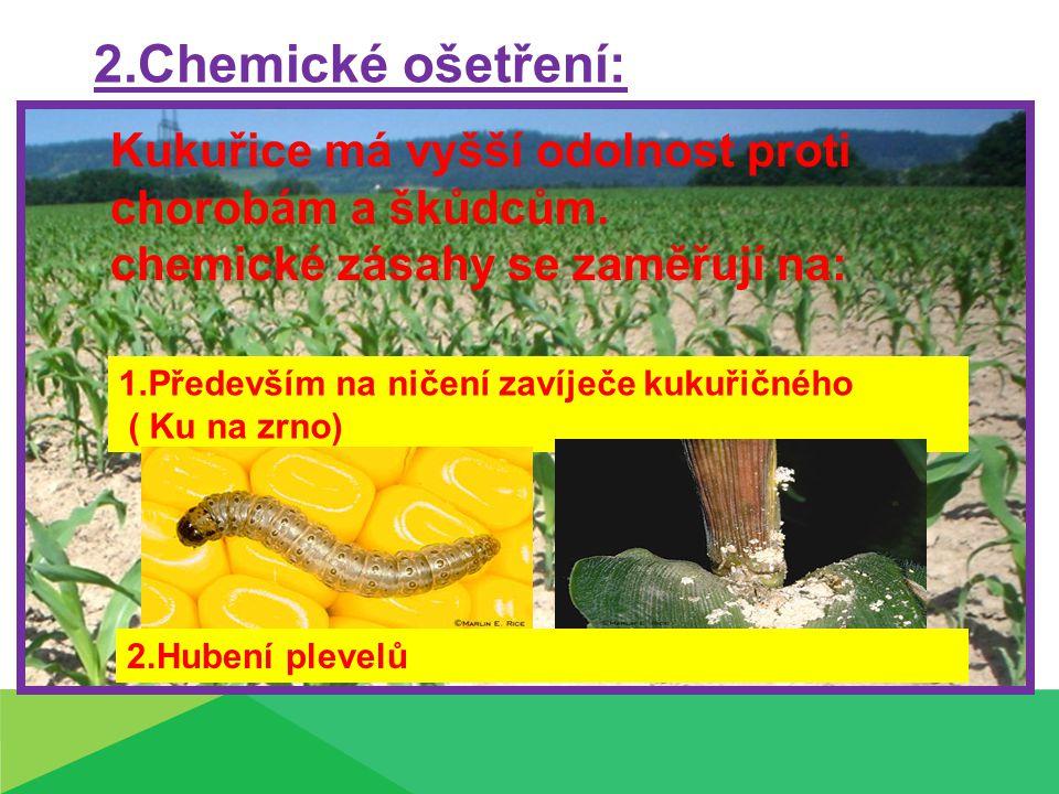 2.Chemické ošetření: Kukuřice má vyšší odolnost proti chorobám a škůdcům. chemické zásahy se zaměřují na: