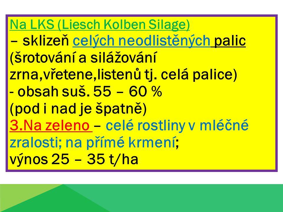 Na LKS (Liesch Kolben Silage)