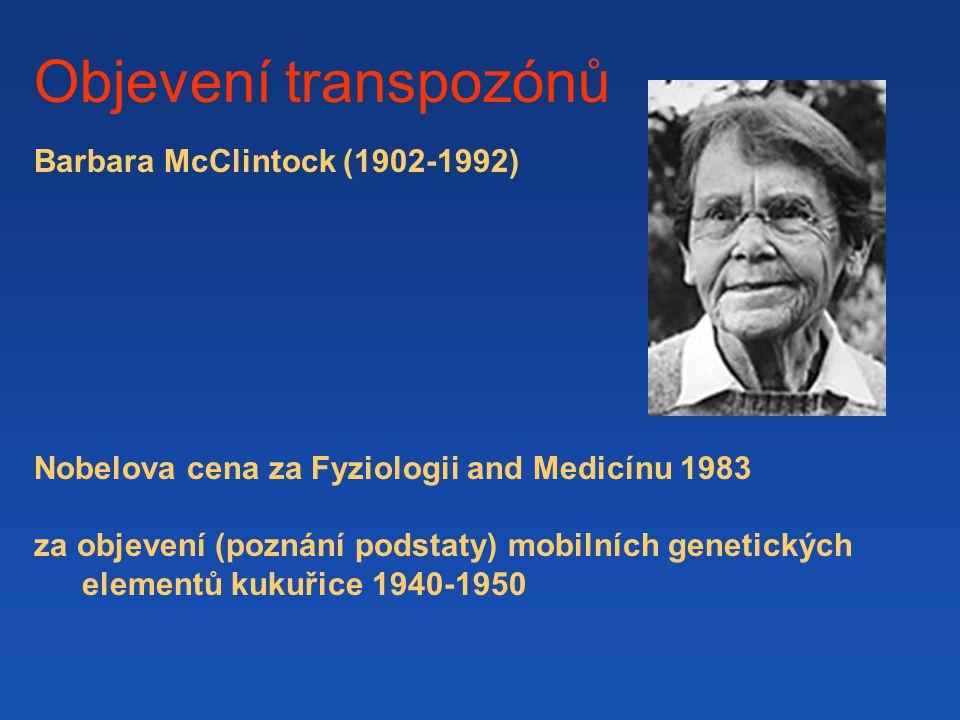 Objevení transpozónů Barbara McClintock (1902-1992)