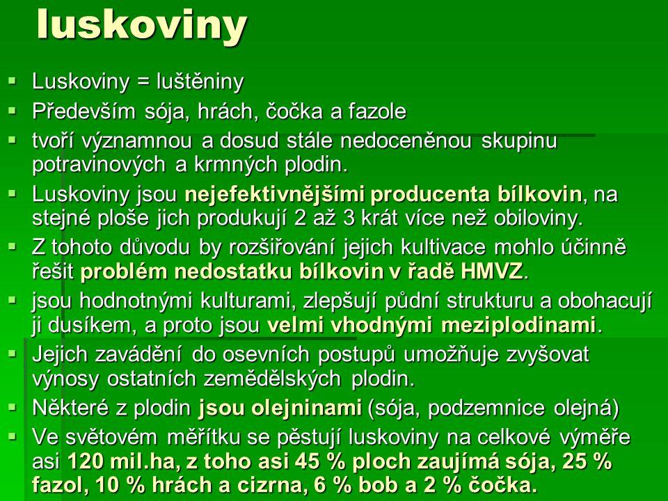 luskoviny Luskoviny = luštěniny Především sója, hrách, čočka a fazole