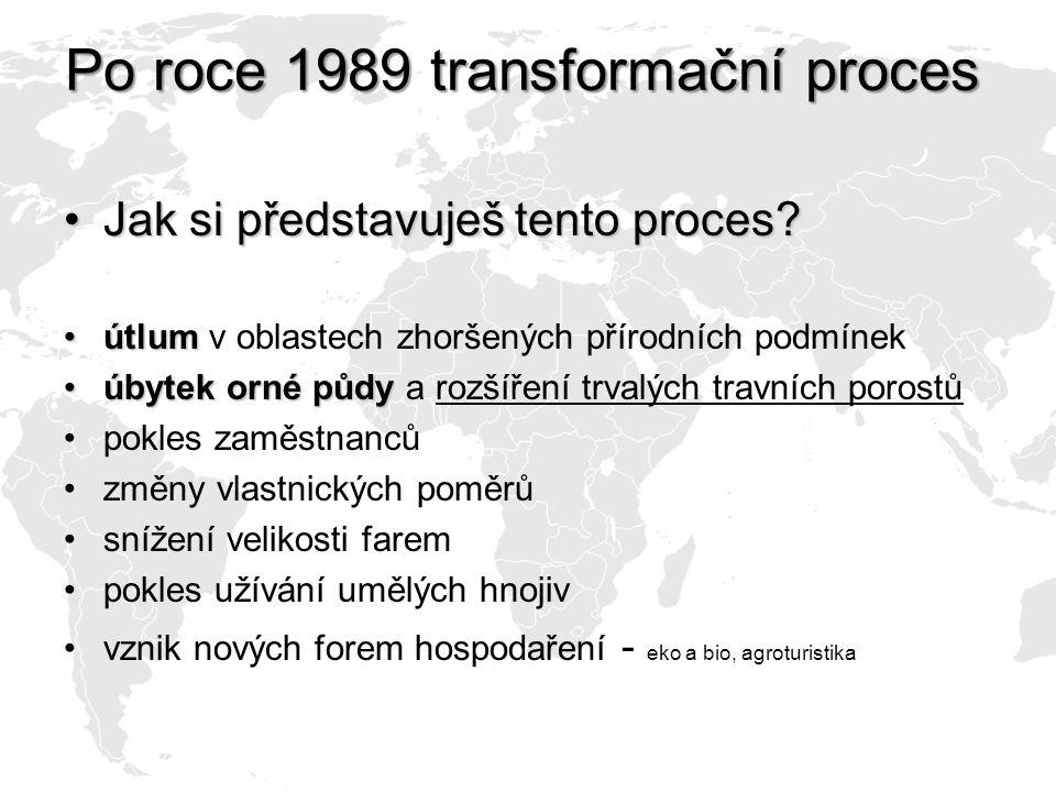 Po roce 1989 transformační proces