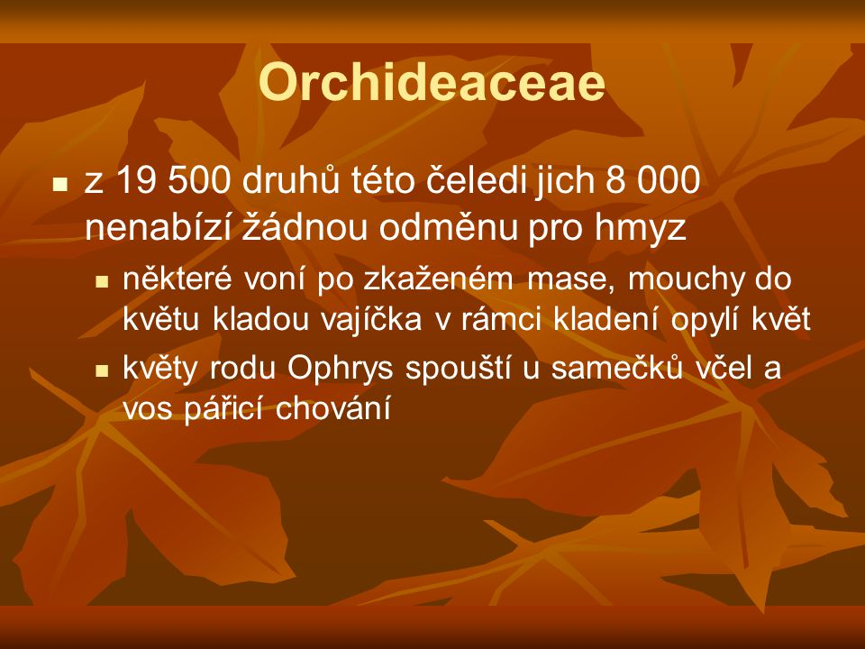 Orchideaceae z 19 500 druhů této čeledi jich 8 000 nenabízí žádnou odměnu pro hmyz.
