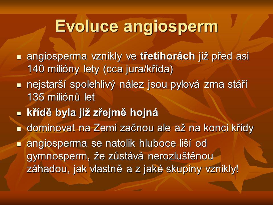 Evoluce angiosperm angiosperma vznikly ve třetihorách již před asi 140 milióny lety (cca jura/křída)