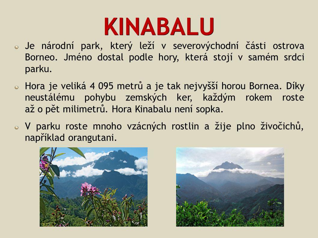KINABALU Je národní park, který leží v severovýchodní části ostrova Borneo. Jméno dostal podle hory, která stojí v samém srdci parku.