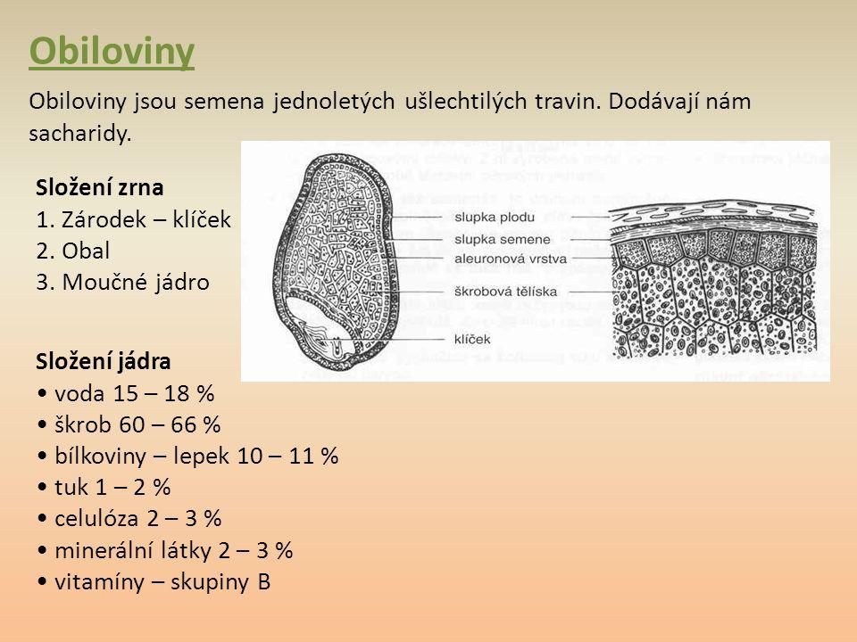 Obiloviny Obiloviny jsou semena jednoletých ušlechtilých travin. Dodávají nám sacharidy. Složení zrna 1. Zárodek – klíček.