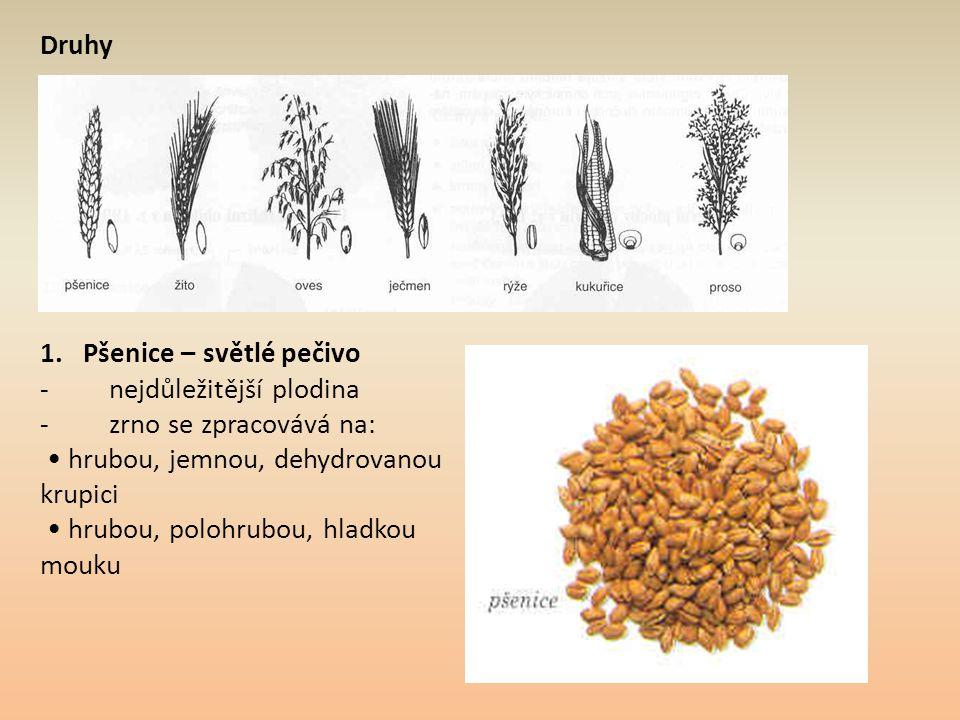 Druhy 1. Pšenice – světlé pečivo. - nejdůležitější plodina. - zrno se zpracovává na: