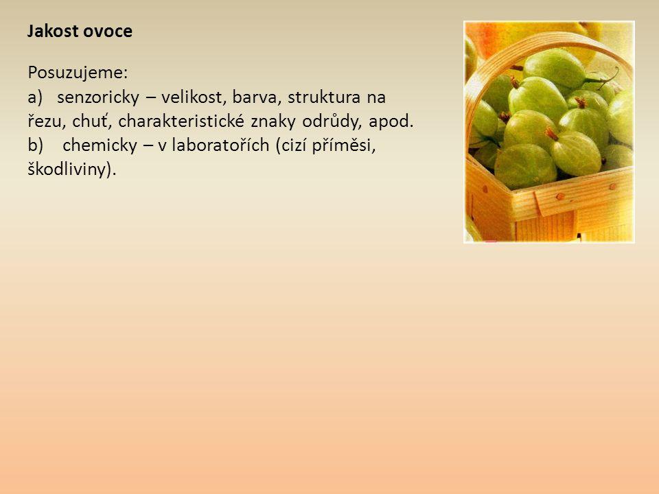 Jakost ovoce Posuzujeme: a) senzoricky – velikost, barva, struktura na řezu, chuť, charakteristické znaky odrůdy, apod.