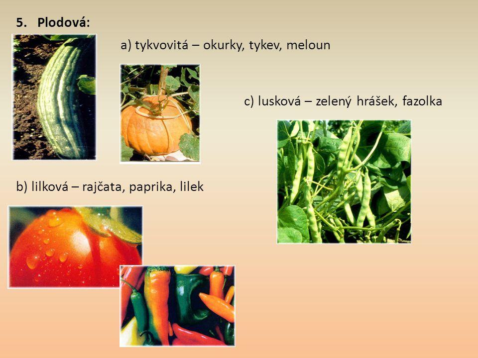 5. Plodová: a) tykvovitá – okurky, tykev, meloun.