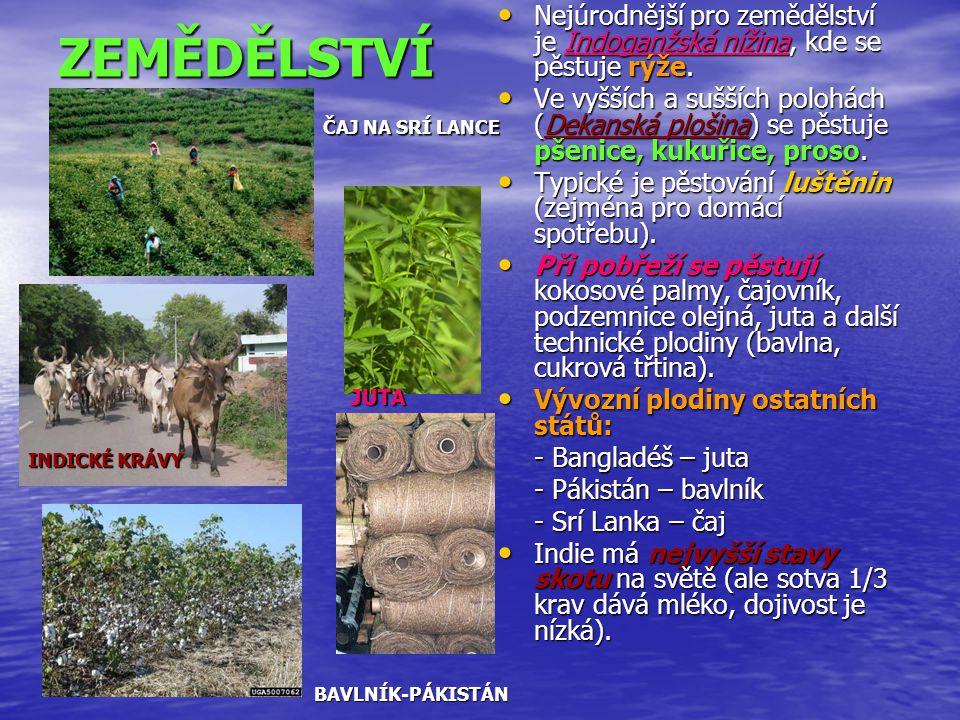 Nejúrodnější pro zemědělství je Indoganžská nížina, kde se pěstuje rýže.