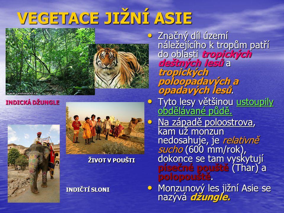 VEGETACE JIŽNÍ ASIE Značný díl území náležejícího k tropům patří do oblasti tropických deštných lesů a tropických poloopadavých a opadavých lesů.