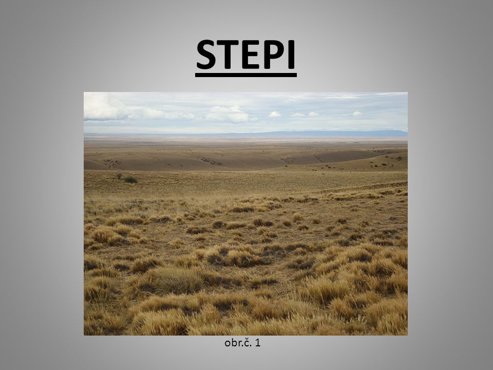 STEPI obr.č. 1