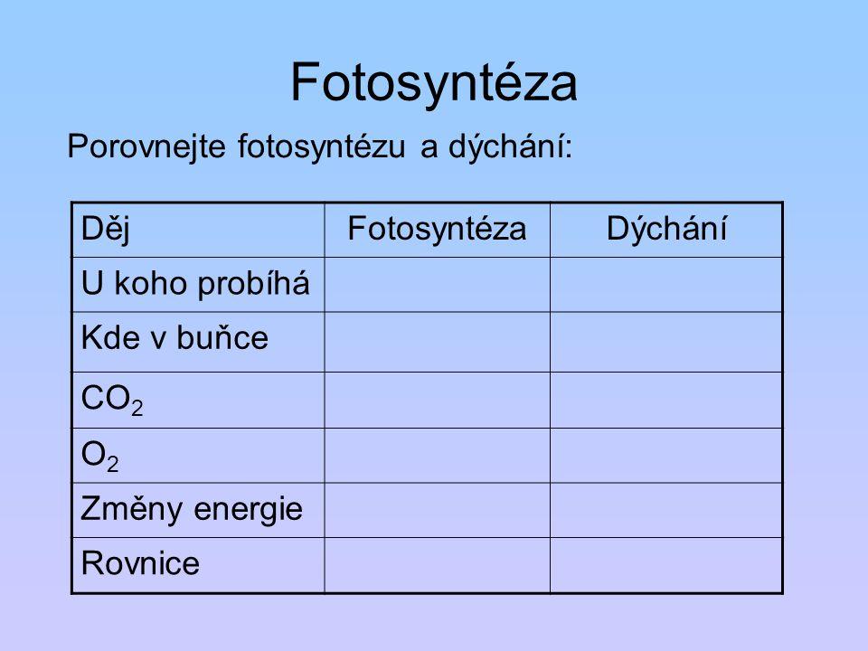 Fotosyntéza Porovnejte fotosyntézu a dýchání: Děj Fotosyntéza Dýchání