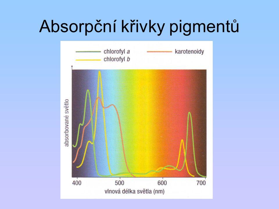 Absorpční křivky pigmentů
