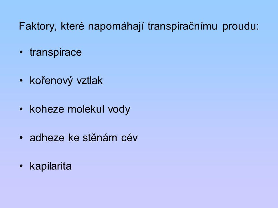 Faktory, které napomáhají transpiračnímu proudu: