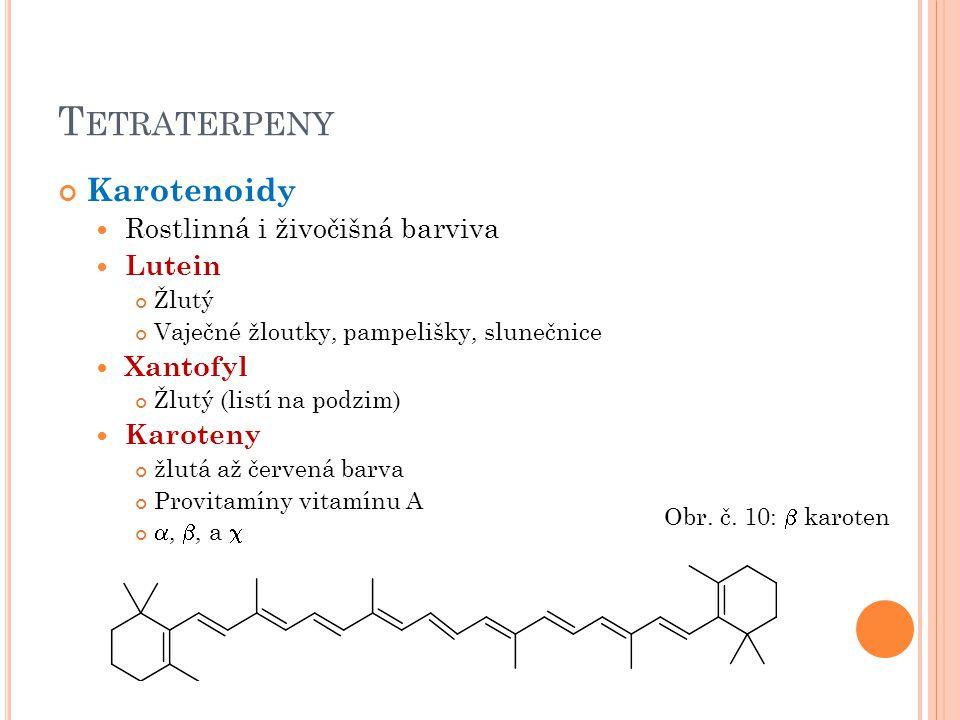 Tetraterpeny Karotenoidy Rostlinná i živočišná barviva Lutein Xantofyl