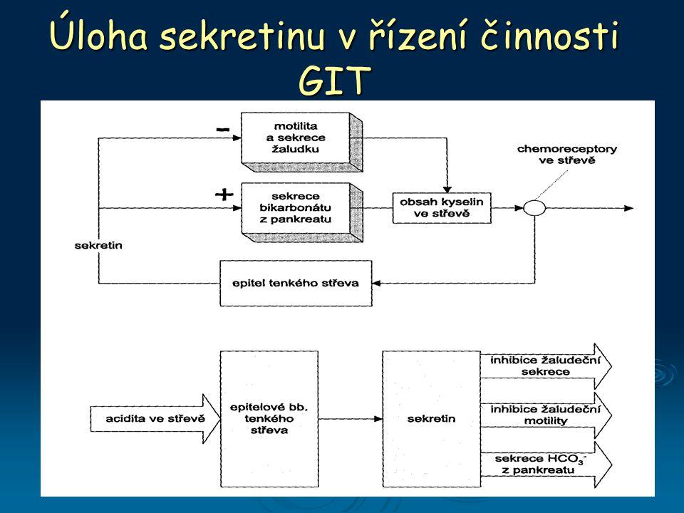 Úloha sekretinu v řízení činnosti GIT