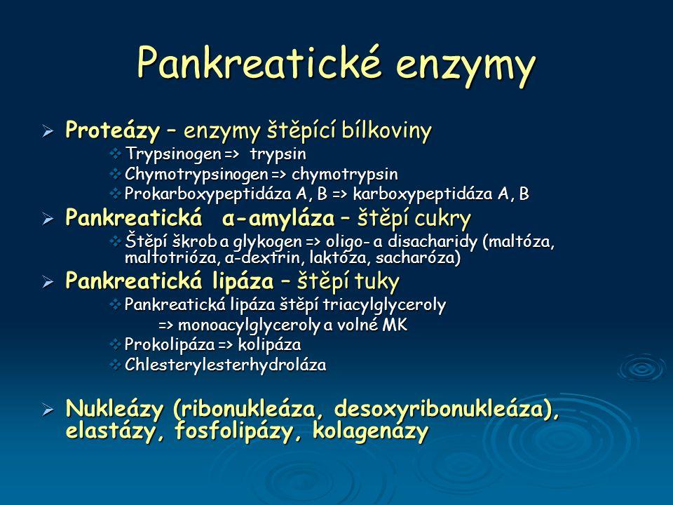 Pankreatické enzymy Proteázy – enzymy štěpící bílkoviny