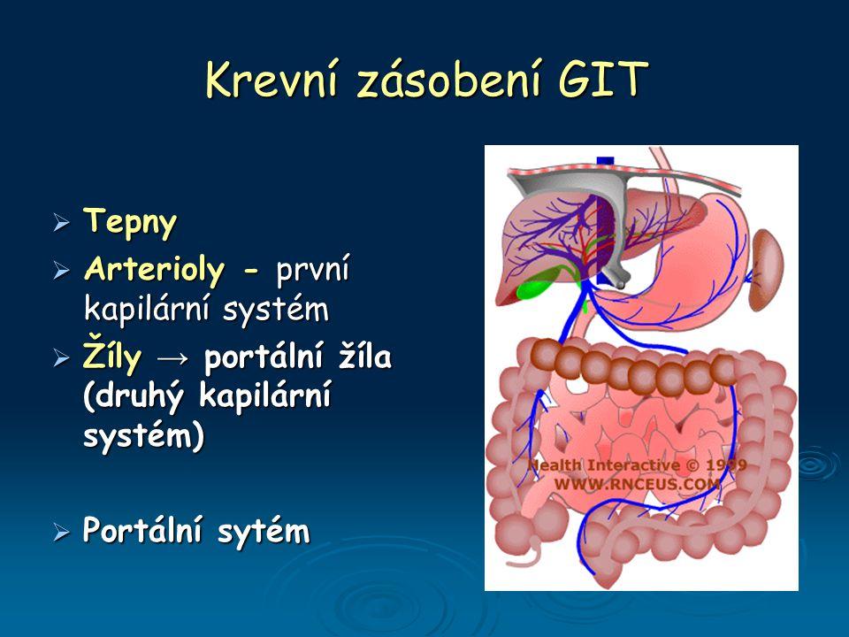 Krevní zásobení GIT Tepny Arterioly - první kapilární systém