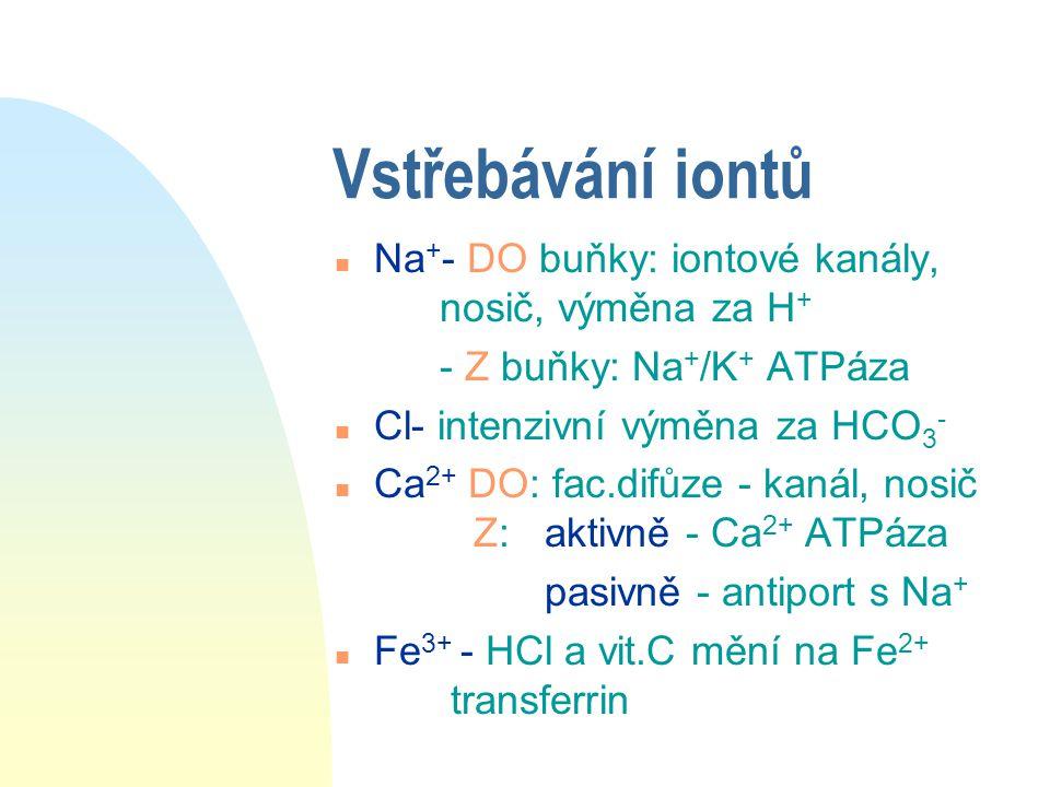 Vstřebávání iontů Na+- DO buňky: iontové kanály, nosič, výměna za H+