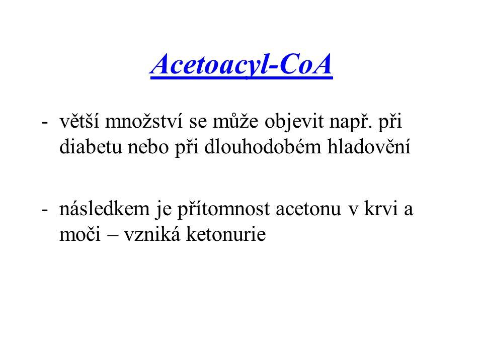 Acetoacyl-CoA větší množství se může objevit např. při diabetu nebo při dlouhodobém hladovění.
