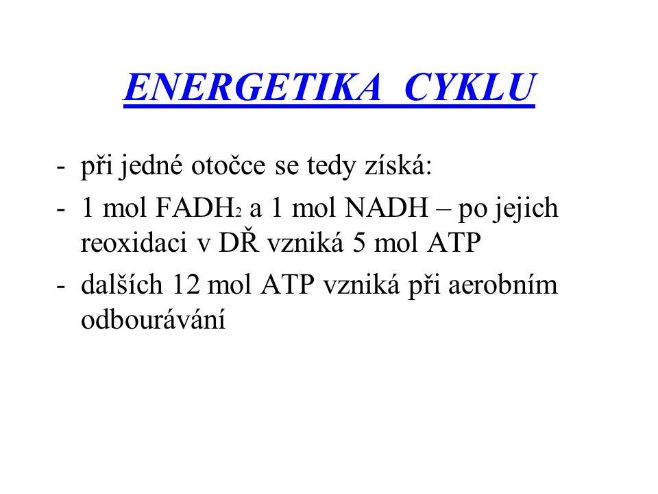 ENERGETIKA CYKLU při jedné otočce se tedy získá:
