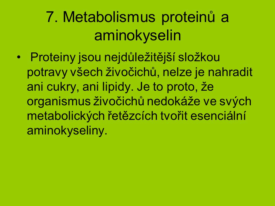 7. Metabolismus proteinů a aminokyselin
