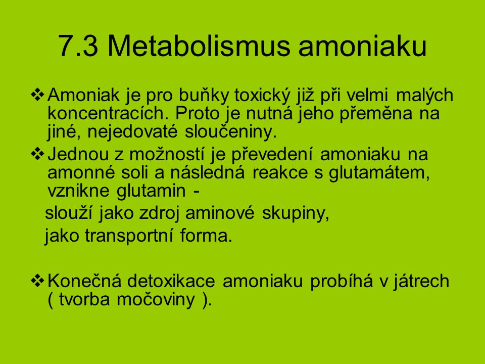 7.3 Metabolismus amoniaku