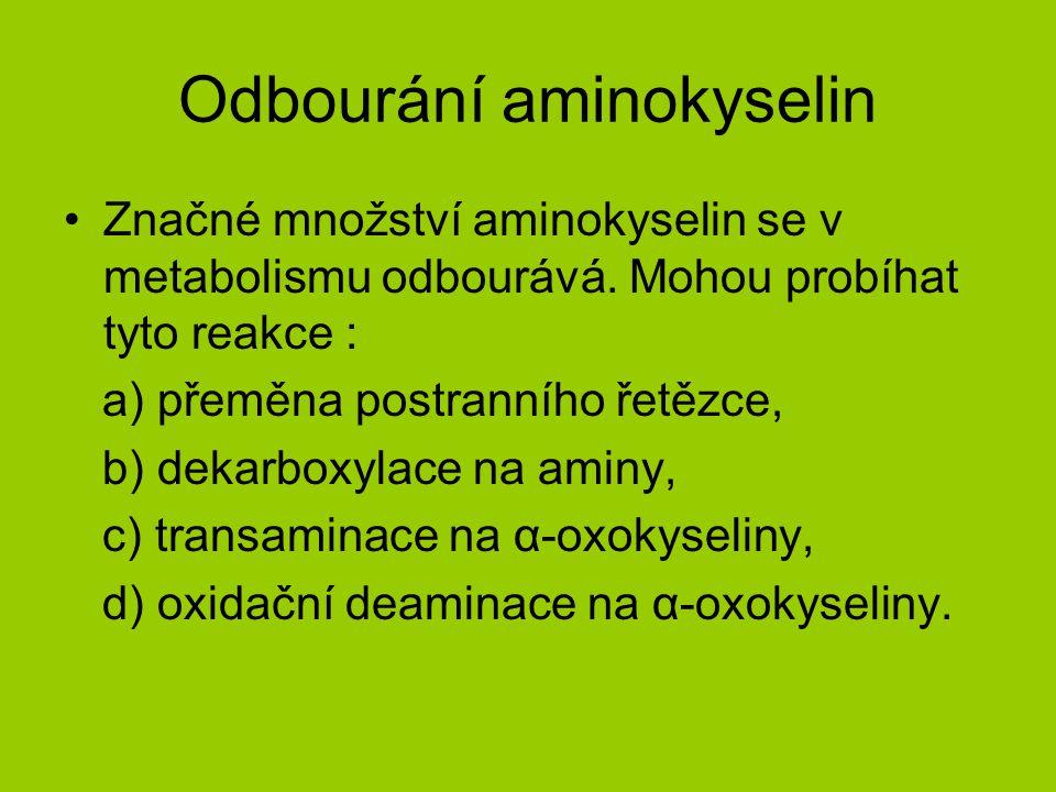 Odbourání aminokyselin