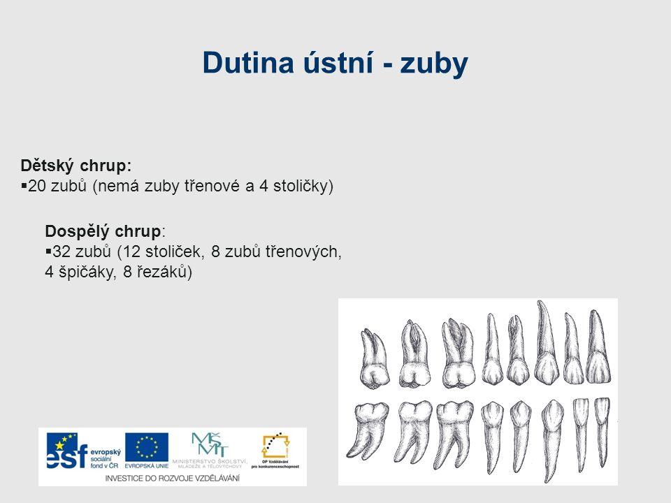 Dutina ústní - zuby Dětský chrup: