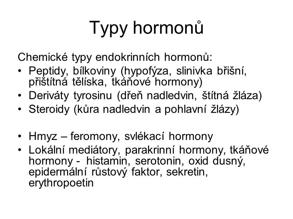 Typy hormonů Chemické typy endokrinních hormonů: