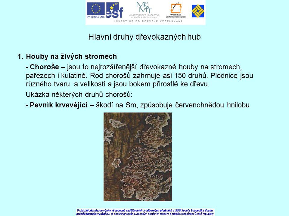 Hlavní druhy dřevokazných hub