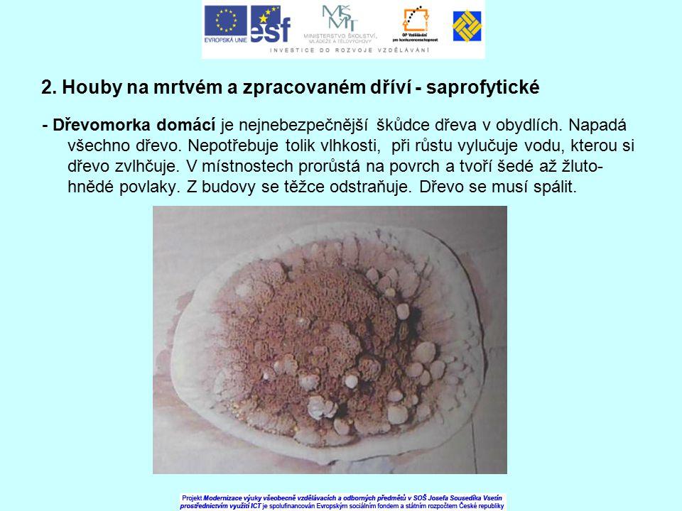 2. Houby na mrtvém a zpracovaném dříví - saprofytické